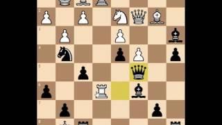 Зажал соперника в тиски в дебюте Рети. Шахматы Блиц