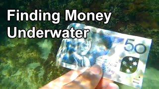 Found 50 Dollars Snorkelling