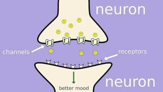 How does fluoxetine (Prozac) work?