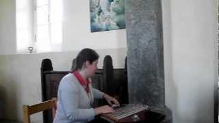 citrarka damjana praprotnik v podružnični cerkvi sv jakoba v pudobu v loški dolini