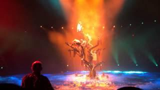 Водное Шоу Лас Вегаса. Las Vegas water show