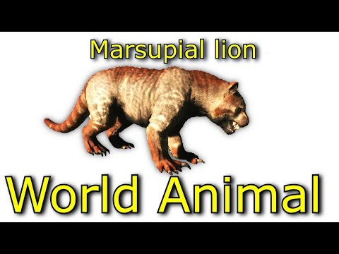 Jurassic World Animal l Planet Dinosaurs l Marsupial lion l Learning Video for Kids l Part 5
