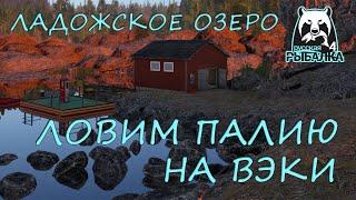 Русская рыбалка 4 Озеро Ладожское Фарм Спиннинг Палия Вэки