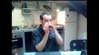 Harmonica Tips by Big Al Harmonicas & Easyharp #6