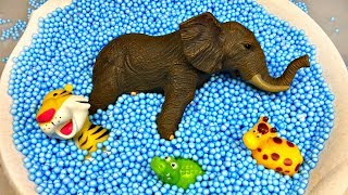Learn Colors with Animals and Farm Surprise Toy for Kid Child with Foam Beads thumbnail
