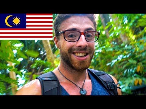 JUNGLE HIKING 🌿 TIOMAN ISLAND, MALAYSIA