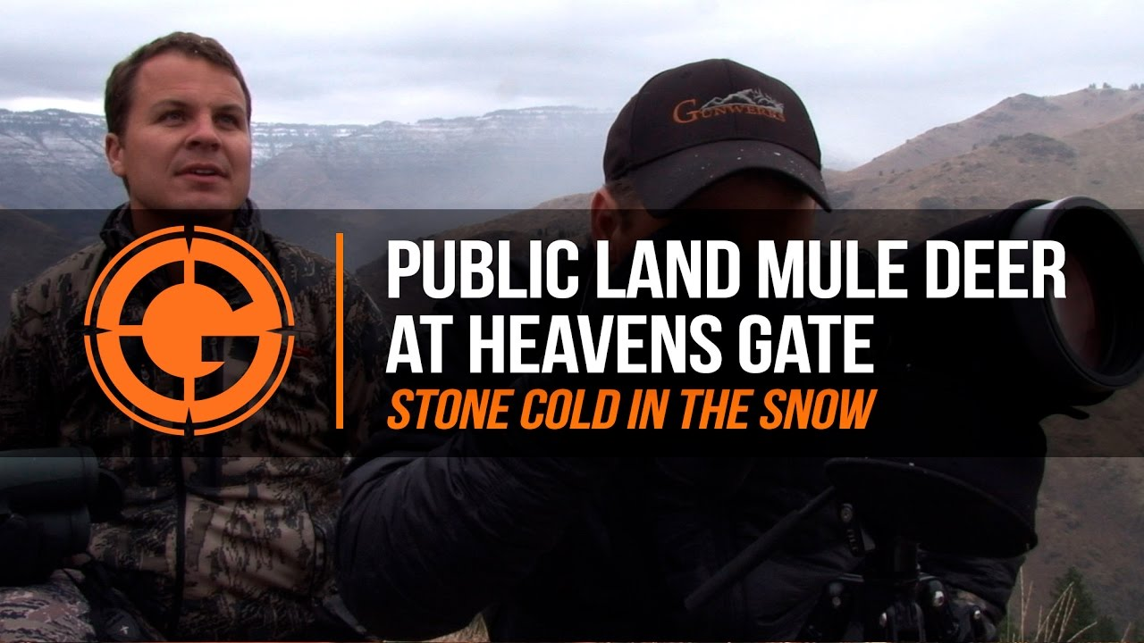 LRP Highlights | S1 E14 Public Land Mule Deer at Heavens ...