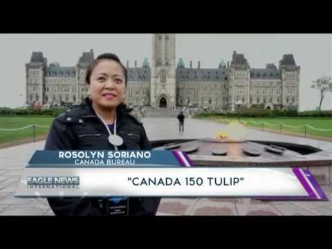 """""""CANADA 150 TULIP"""" - ROSOLYN SORIANO OF CANADA BUREAU"""