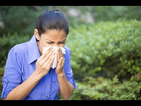 Air pollutants could boost potency of common airborne allergens
