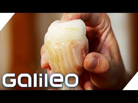 Richtig Einfrieren - So Bleibt Essen Länger Haltbar | Galileo | ProSieben