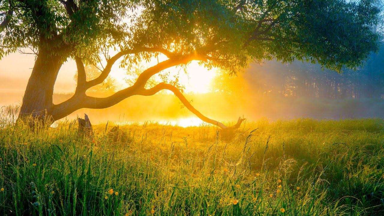 """Beautiful Relaxing Hymns, Peaceful Instrumental Music, """"Monday Morning Sunrise"""" By Tim Janis"""