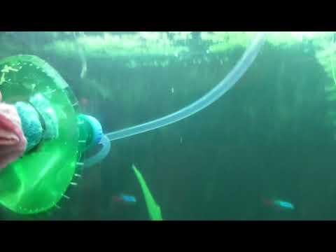 Аккуратная чистка стекла аквариума