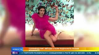 Фламинго-флешмоб набирает популярность в Сети