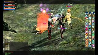 Lineage 2 INTERLUDE BrotherInArms