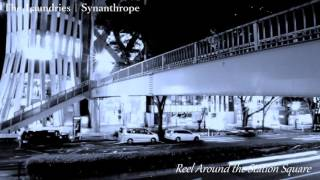 3rd New Album The Laundries / Synanthrope 2016 / 12 / 7 Release ザ・ランドリーズ 3rd Album『Synanthrope(シナントロープ)』 2016年12月7日リリース!