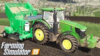 Sadzenie trzciny cukrowej - Farming Simulator 19 | #66