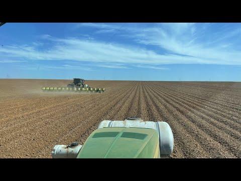 Planting 1,500 acres of peanuts in a week