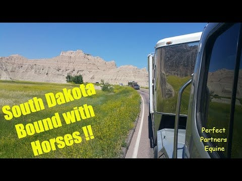 Finding Dignity! Trail Riding Our Horses In South Dakota 2019 (part 1)