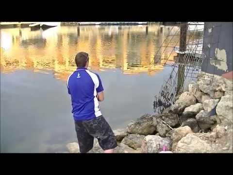 Bream Fishing Perth