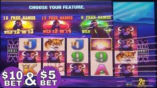 Buffalo Deluxe Slot Machine  Bonus Won & $10 Bet Buffalo's Line Hit !! Live Slot Play