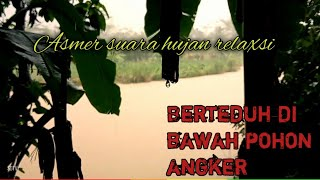 Asmer Heavy Rain. Take shelter under a tree. Relaxation | Bushcraft | while fishing