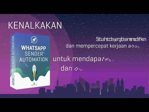 Whatsapp Sender Automation – Instituite