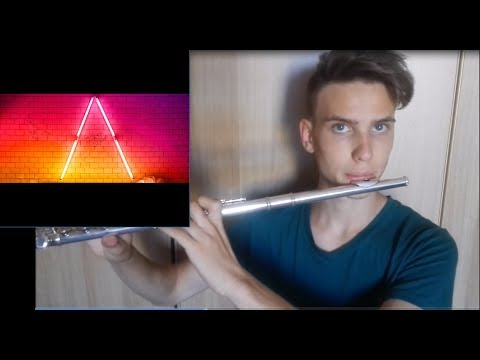 More than you know FLUTE COVER (Axwell /\ Ingrosso)