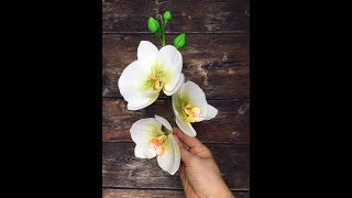 орхидея из мастики