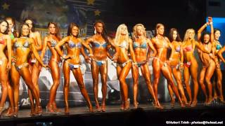 WFF Universe 2015 - Bikinis (Waiting for results)