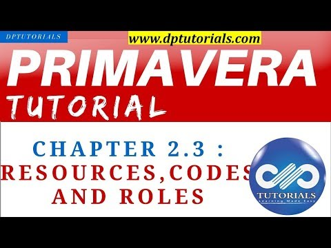 Primavera P6 Tutorial : Chapter - 2.3 :  Resources,Codes and Roles || dptutorials
