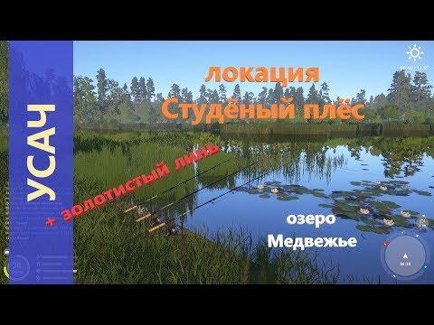 Русская рыбалка 4 - озеро Медвежье - Усач и золотистый линь