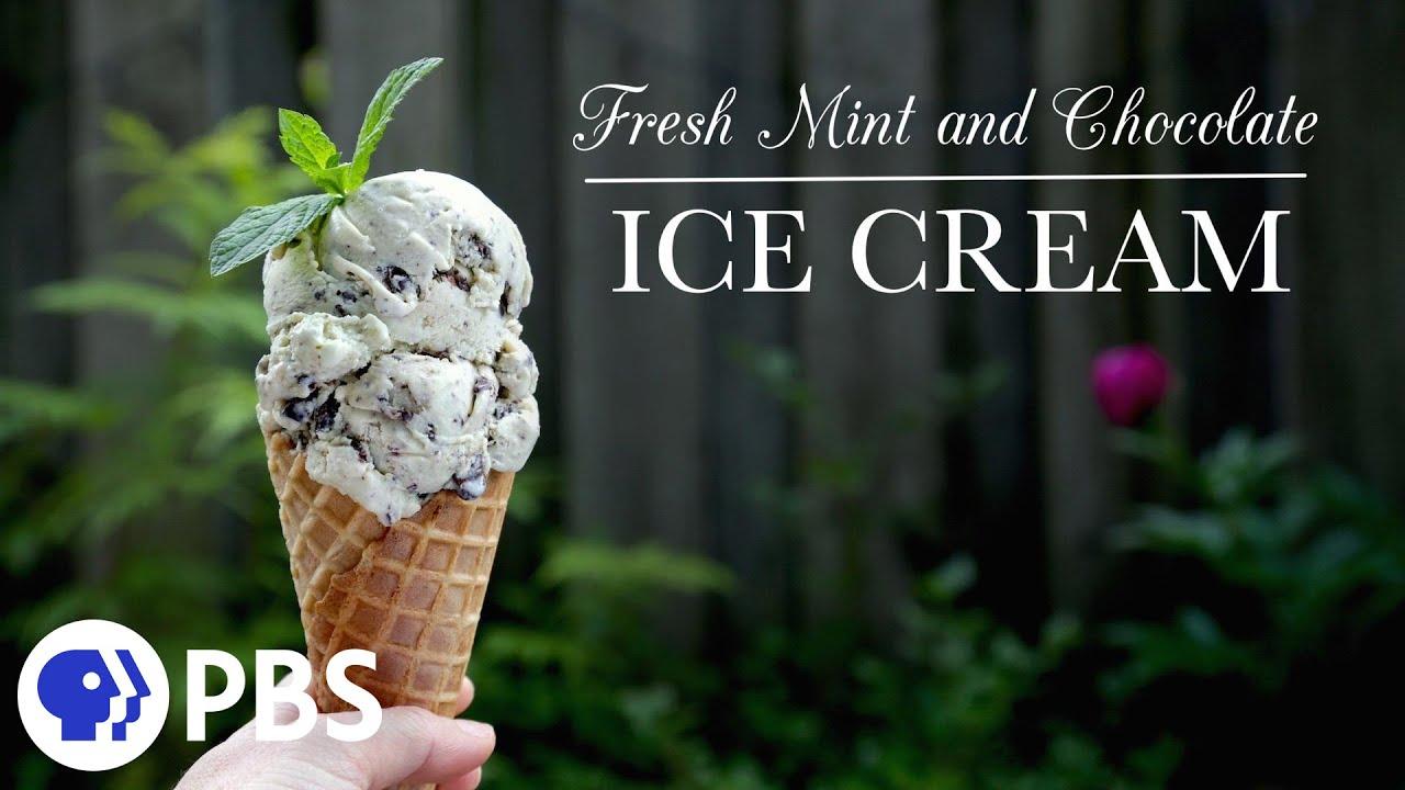 recipe: fresh mint ice cream recipe no eggs [28]