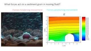 2  - Sediment transport