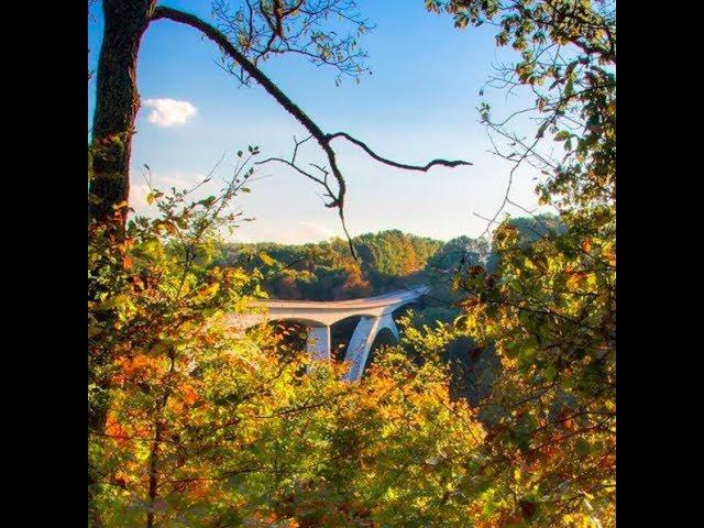 Fall Foliage: Natchez Trace Parkway