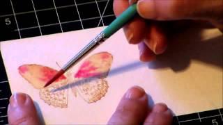 Painting Watercolor Butterflies