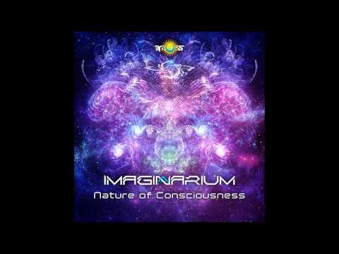 Imaginarium - Nature Of Consciousness