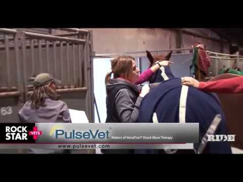 Why Dr. Chris Ray uses PulseVet