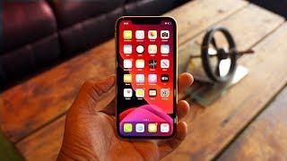 iPhone 11- Long Term Review!