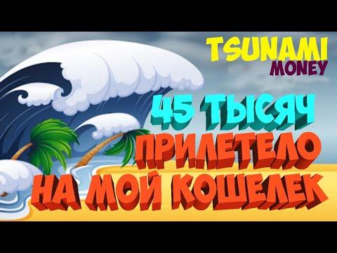 Как заработать в Сети/Цунами Мани,мой доход 45000 тыс рублей. Перспективный проект#TSUNAMI #ЦУНАМИ