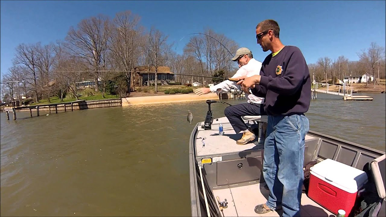 Lake greenwood spring crappie fishing youtube for Lake greenwood sc fishing report