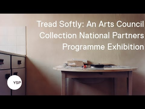 Tread Softly: An Arts Council Collection National Partners Programme Exhibition