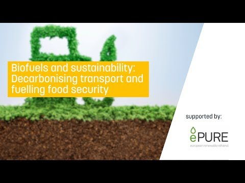 Biofuels and sustainability: decarbonising transport and fue