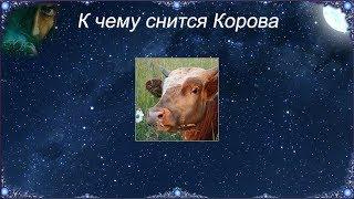К чему снится Корова (Сонник)