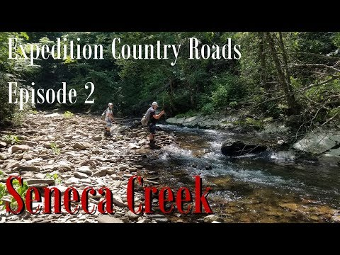 WBD - Fly Fishing Expedition Country Roads Episode 2 Seneca Creek WV  Euro Nymphing, Dry Dropper