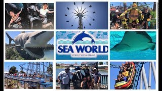 Download lagu Sea World Gold Coast Australia 2019 CREATURES of THE DEEP MP3