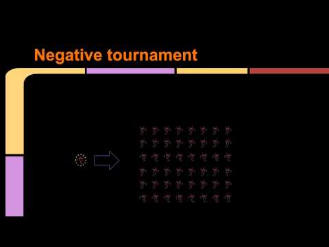 Genetic Programming in Java with TinyGP (Part 4 - tournament selection)