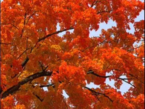 "Douglas Moore: Symphony No. 1:  ""Symphony of  Autumn"""