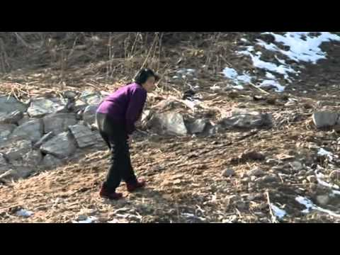 China & North Korea   The Great Escape Channel4 2009, Unreported World