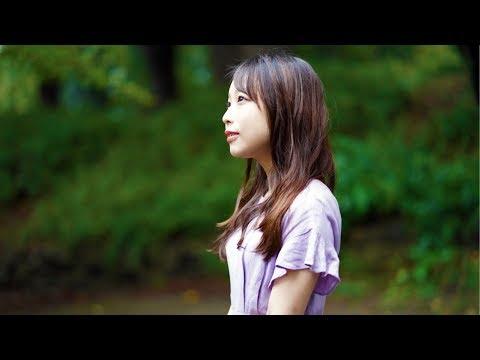 Aimer - 蝶々結び(歌:yuuri)