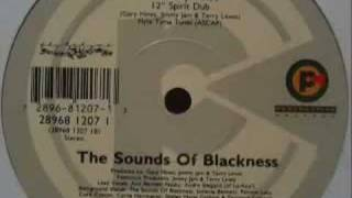 Sounds of Blackness - Testify (Amen Dub)
